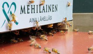 Finlaysonin Mehiläinen