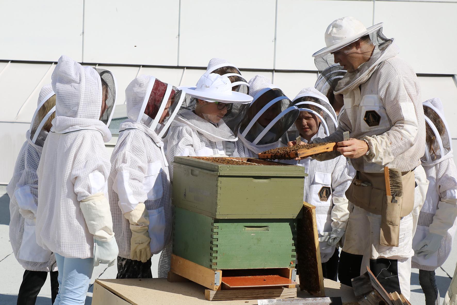 mehiläiset5_EmmiRämö